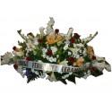 Centro funerario prueba